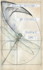Story(cycle) page 29